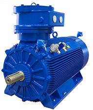Motor D5L - MarelliMotori